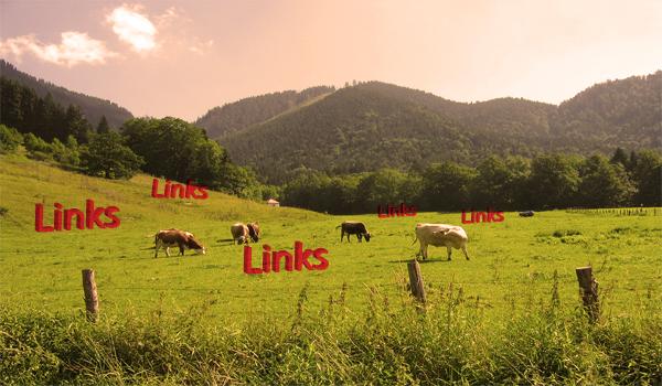 link-building-through-Link-Farm